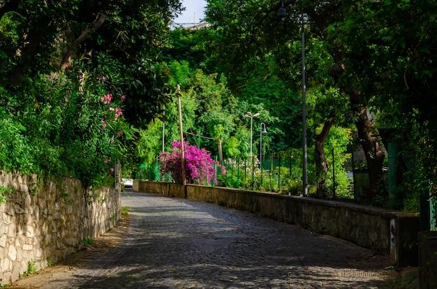 カンパニア州、イタリアのヴィコエケネセの素晴らしい場所と通り