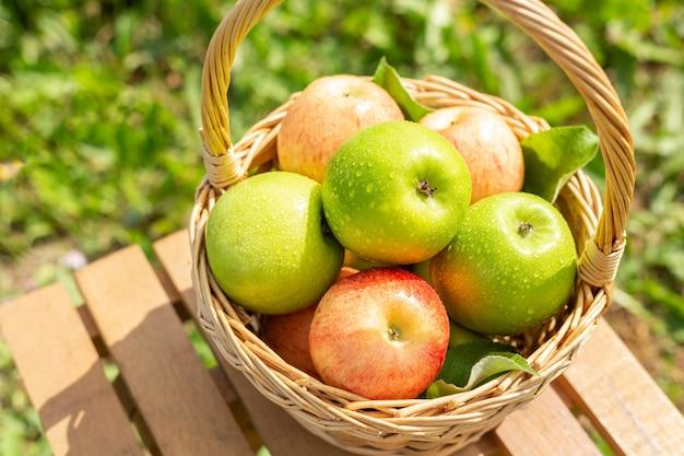 木製のテーブルの上の枝編み細工品バスケットの青リンゴ庭の緑の芝生収穫時期素朴なスタイル