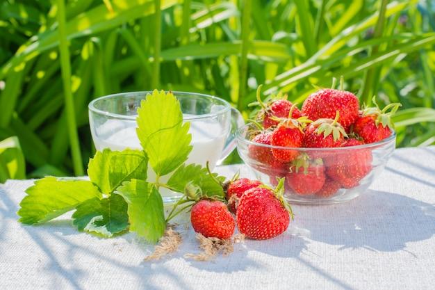 Клубника с ягодами и листьями, миска с ягодами и стакан молока на салфетке на фоне травы