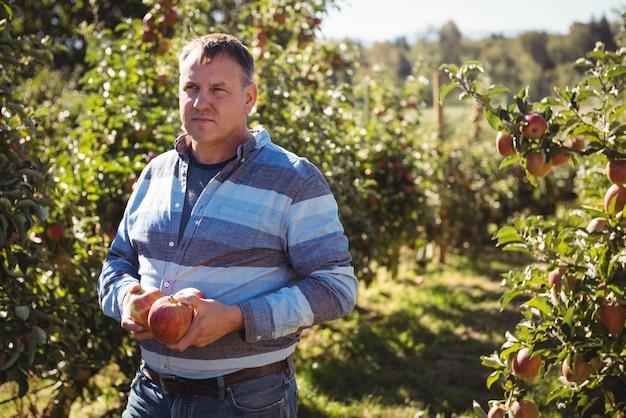 リンゴ園でリンゴを保持している農家の肖像画