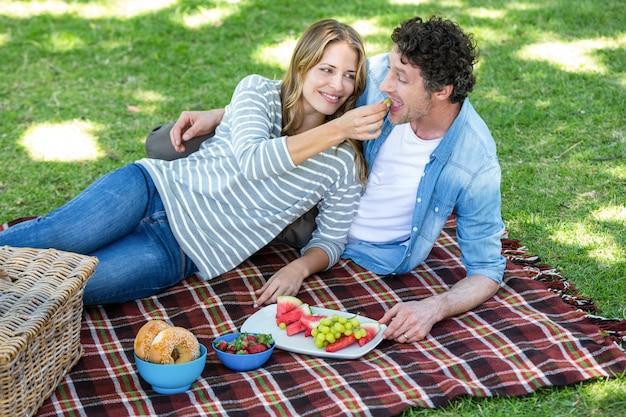 ピクニックを持っているカップル