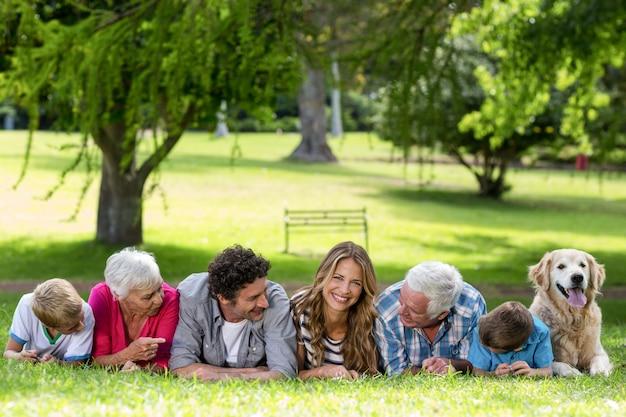 公園の芝生の上に横たわっている犬と家族