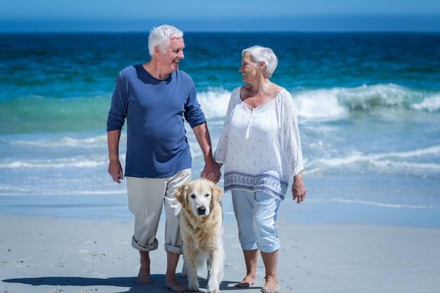 Симпатичные пожилая пара, держась за руки, прогулки с собакой