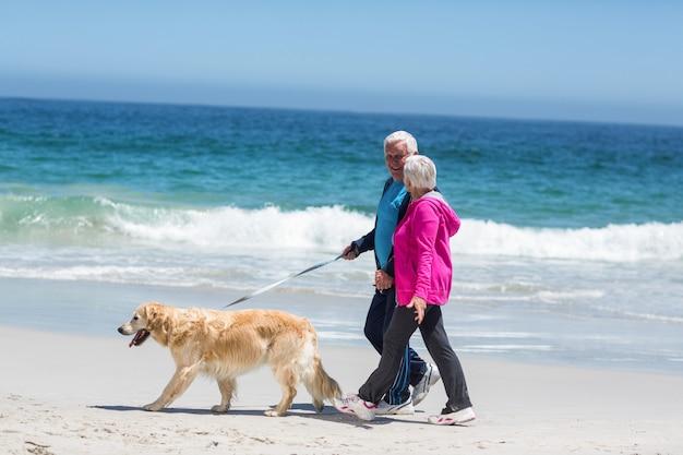 彼らの犬を歩いてかわいい成熟したカップル