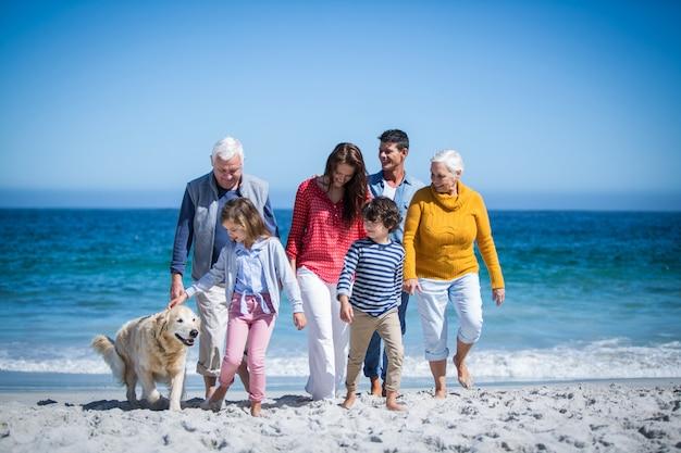 ビーチで犬と幸せな家族