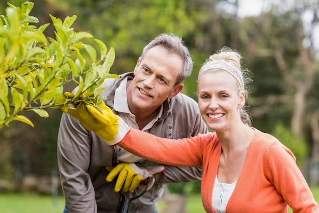 庭の木を見てかわいいカップル
