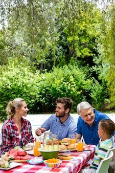 Семья разговаривает во время обеда на лужайке