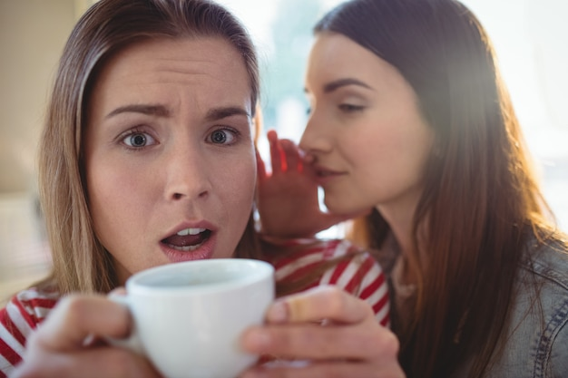 Шокированная женщина с подругой шепчет в кафе