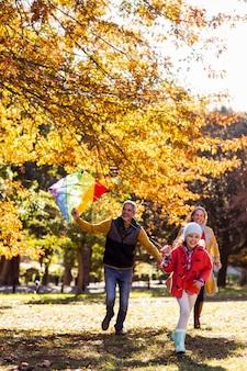 Семья играет в парке с кайтом