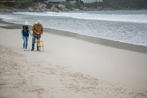 Пара гуляет с собакой