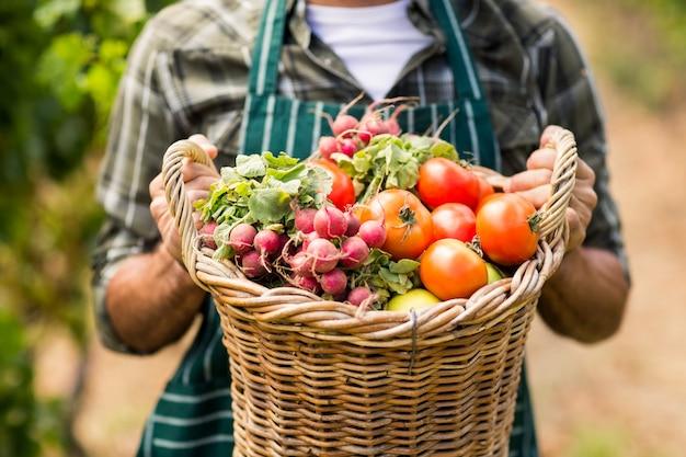 Средняя часть фермера с корзиной овощей