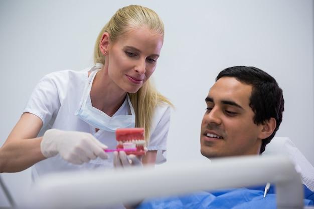 Стоматолог показывает пациенту набор модельных зубов