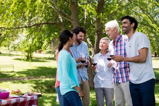 Счастливая семья, общение с красным вином в парке