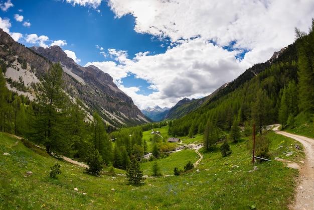 牧草地、山、風光明媚な高山の風景と不機嫌そうな空の森を横断する田舎道