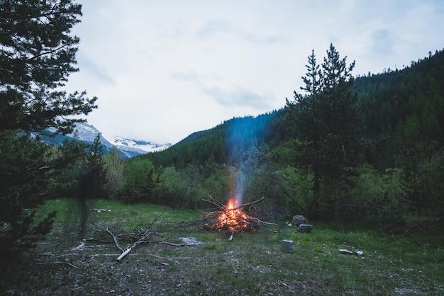 Горящий костер в глухую лиственницу и сосновый лес