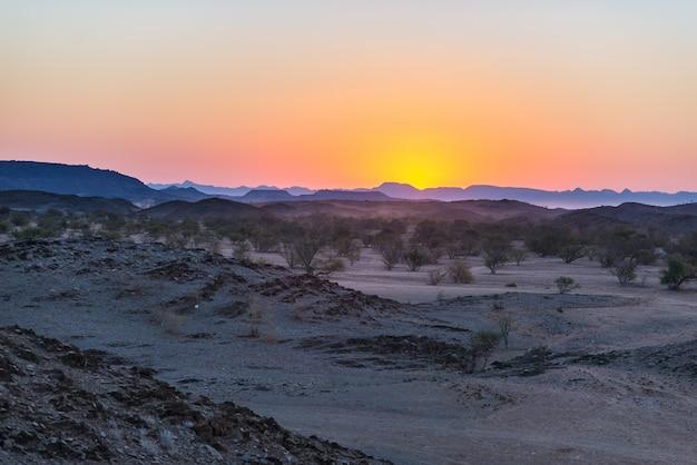 ナミビア砂漠、ナミビア、アフリカのカラフルな夕日。バックライトの山、砂丘、アカシアの木のシルエット
