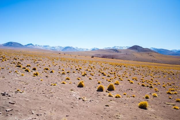 ボリビア南部の砂漠のアンデス高地に沈む夕日