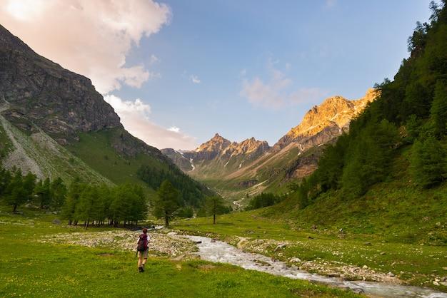 牧歌的な風景の中のハイキングのバックパッカー。アルプスの夏の冒険と探検。日没時の標高の高い山脈の中で咲く草原と緑の森林を流れるストリーム