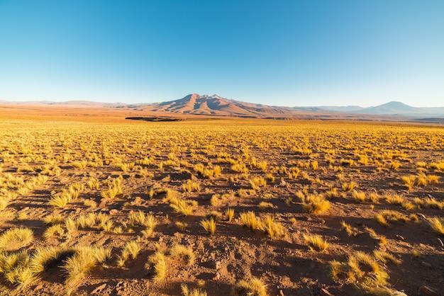 Закат на пустынной андского нагорья, южная боливия