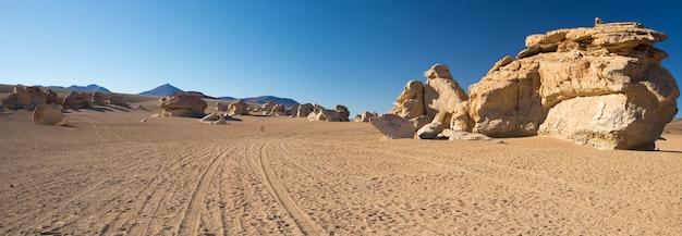 ボリビアのアンデス山脈に広がる砂浜の砂漠