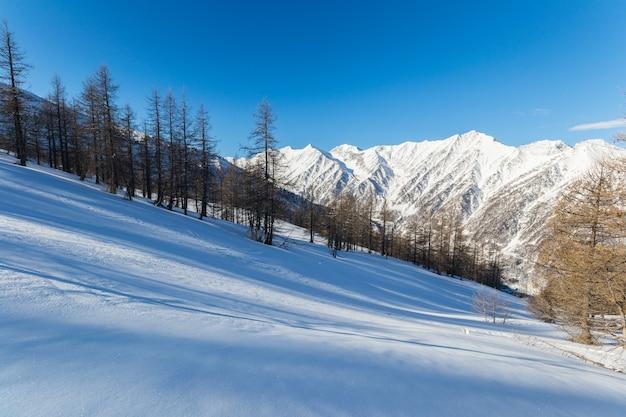 Величественные горные вершины зимой в альпах