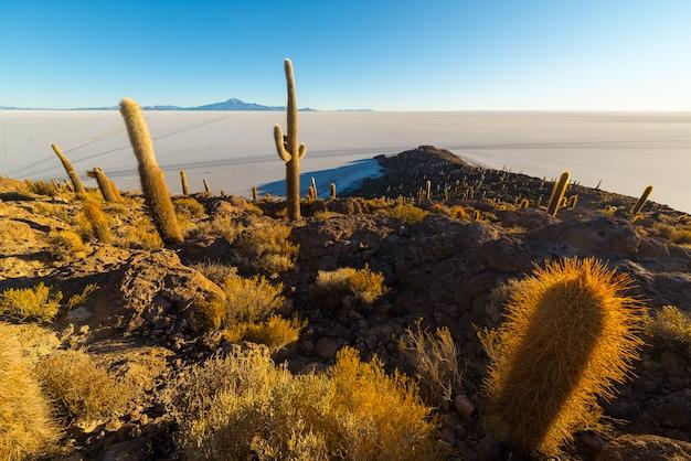 日の出のボリビアのアンデスのウユニ塩フラット