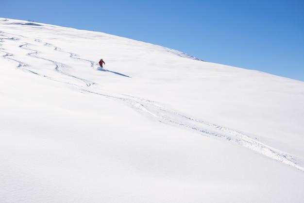 新雪パウダーでのフリーライディング
