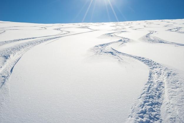 新鮮な雪の斜面でのフリーライディング