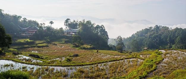 伝統的な村、タナトラジャ