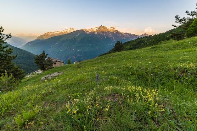 日の出の高山草原
