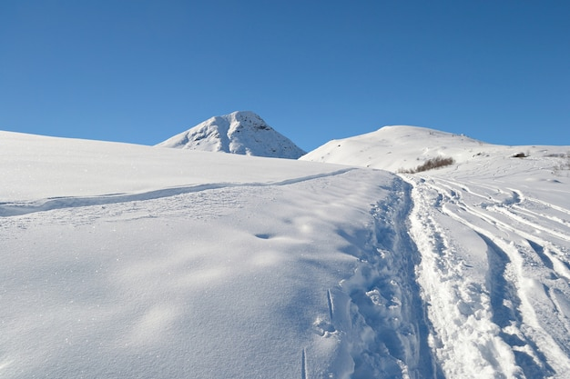 スキーツアーでアルプスを探索