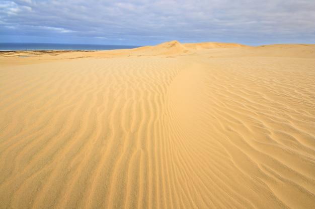 ニュージーランド極北のテパキの海への砂丘