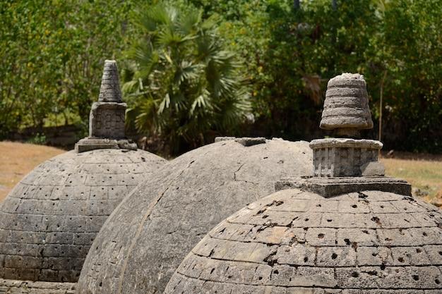 スリランカは、ヒンドゥー教のタミル地方の真ん中にある神秘的な古代仏教遺跡