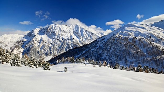 冬、風光明媚な風景のアルプスの雪
