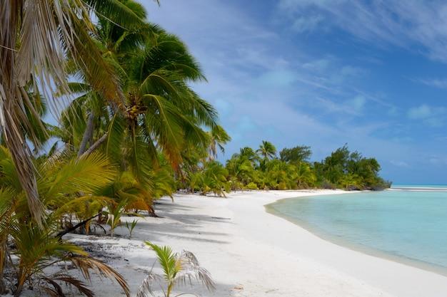 Пустынный пляж на отдаленном острове, атолл аитутаки, острова кука