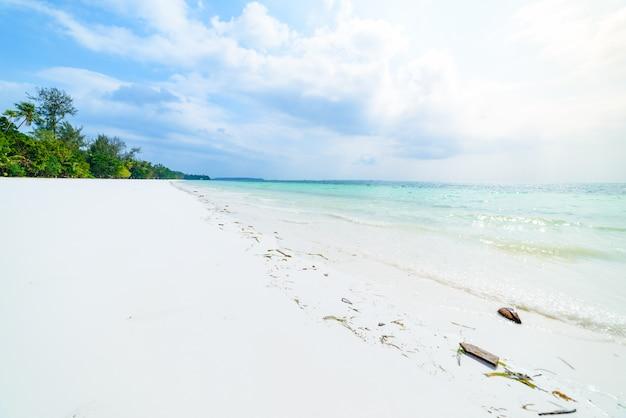 Белый песчаный пляж с кокосовыми пальмами, бирюзовая прозрачная вода, тропическое путешествие, пустынный пляж без людей - острова кей, молуккские острова, индонезия