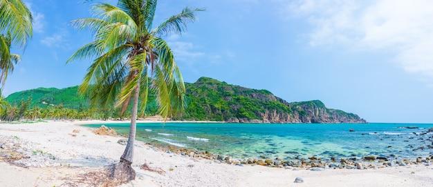 人里離れた熱帯のビーチターコイズブルーの透明な水ヤシの木、バイオム未開発湾クイニョンベトナム中央海岸旅行先