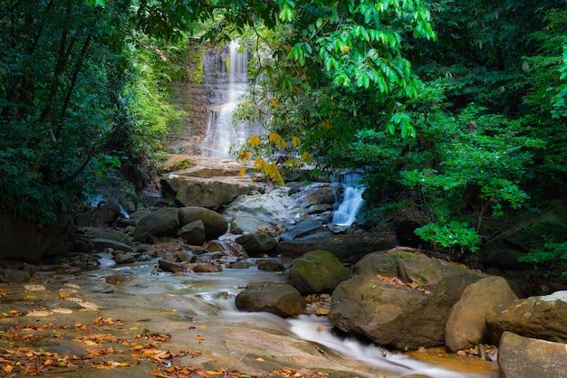 ボルネオの熱帯雨林の滝
