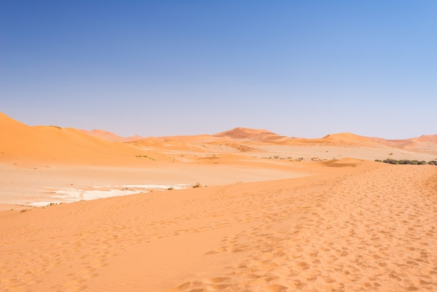 Песчаные дюны намиб пустыни, в прекрасном намиб науклуфт национальный парк, намибия, африка.