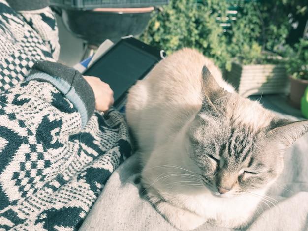 Женщина читает электронную книгу с домашней кошкой, лежа на ногах