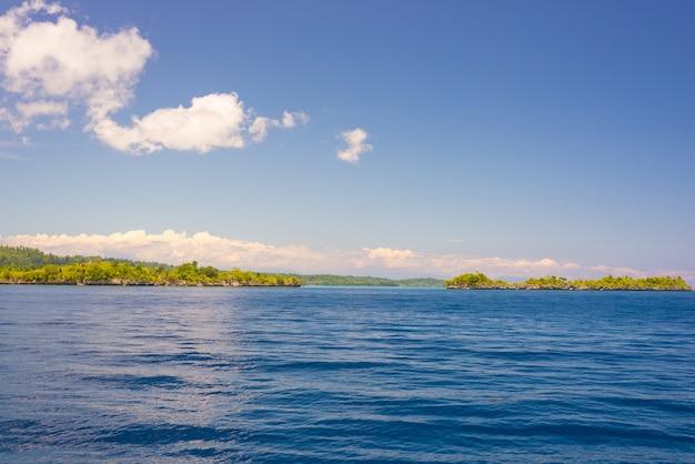 島の岩の多い海岸線を発見