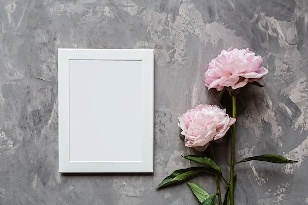Цветы розовый пион, фоторамка на сером бетонном фоне