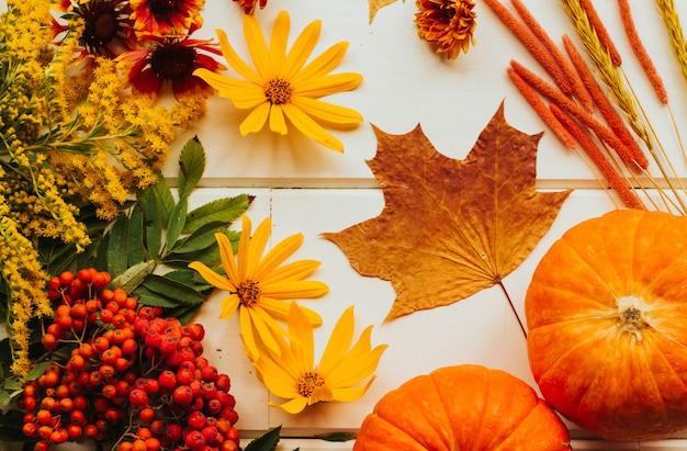 赤、オレンジ、黄色の秋の花とカボチャ。菊、ヘリクリサム、キクイモ。秋の乾燥したカエデの葉。赤いナナカマドの果実。