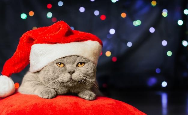 Серый кот в новогодней шапке на красной подушке на фоне рождественских огней