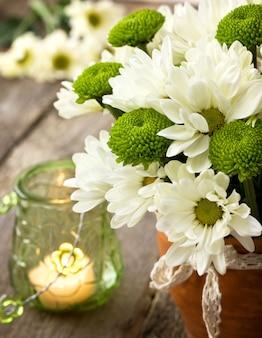 古い木製の背景に白と緑の菊