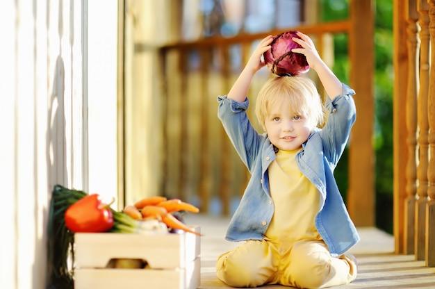 Милый маленький мальчик наслаждается органическим урожаем в домашнем саду