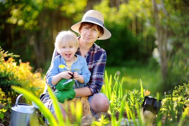 Красивая женщина и ее милый сын, посадка саженцев в постели в домашнем саду в летний день