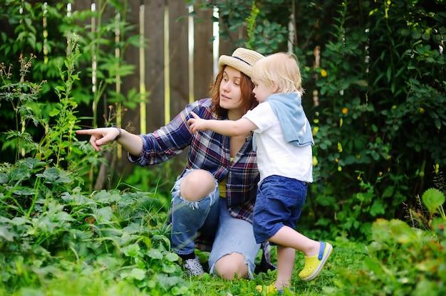 若い女性と庭でかわいい幼児男の子。夏の収穫を楽しんでいる家族。