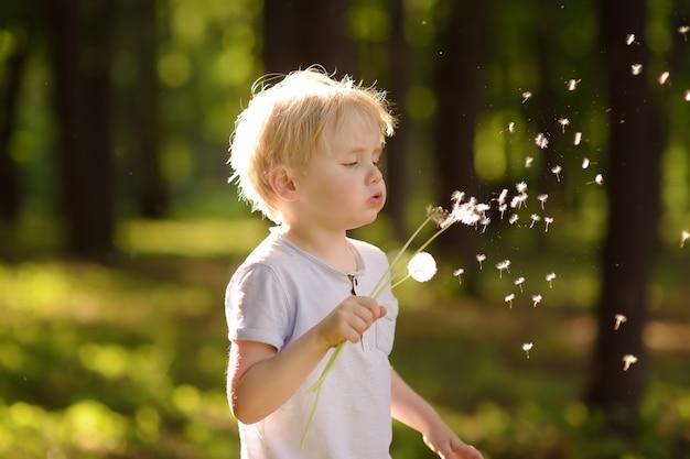 小さな男の子はタンポポの綿毛を吹き飛ばします。願い事をする。