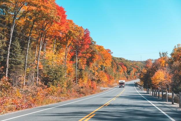 秋の森の中のアメリカの高速道路